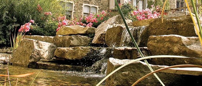 Western University, Graduate Studies - Beryl Ivey Falls