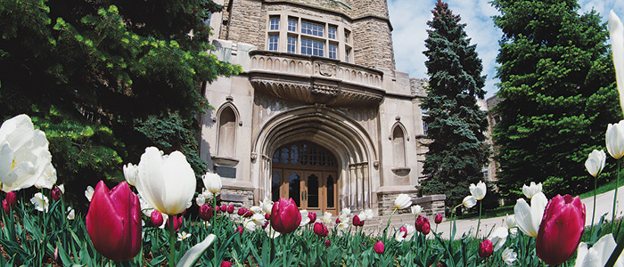 Western University, Graduate Studies - University College Tulips